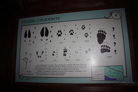 http://f.otzyv.ru/f/05/02/2676/p1910151137295.jpg