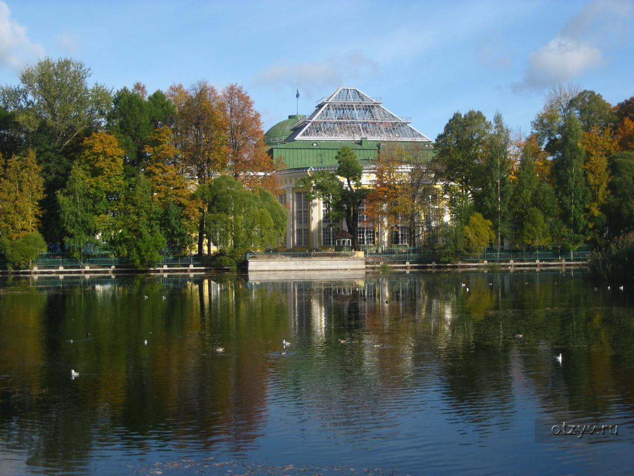 закрыт таврический сад в санкт петербурге фото свой