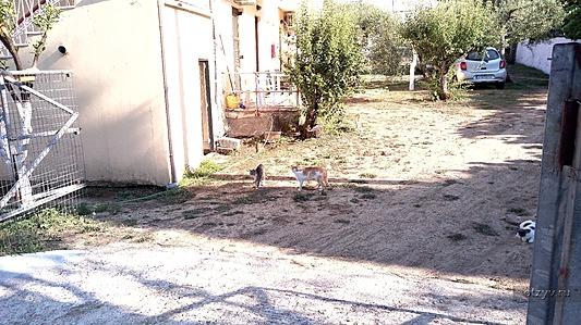 Про апартаменты Эви Арити, мои впечатления от острова Корфу, и не только