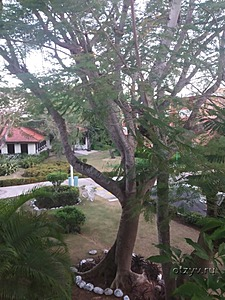 BelleVue Dominican Bay 3* (Бока Чика)