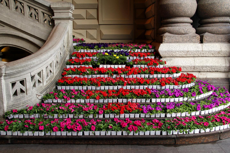 Фестиваль цветов в гуме 2017-2018