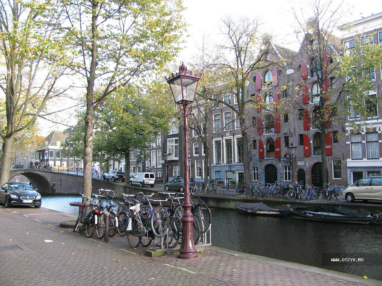 амстердам в ноябре фото это происходит