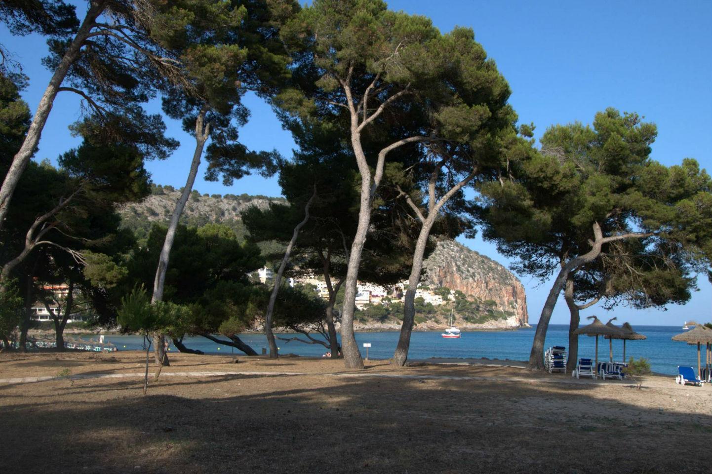 Перемены на Мальорке и другие итоги 18-го тура Ла Лиги 2