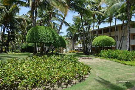 Пунта Кана, Catalonia Royal Bavaro 5*