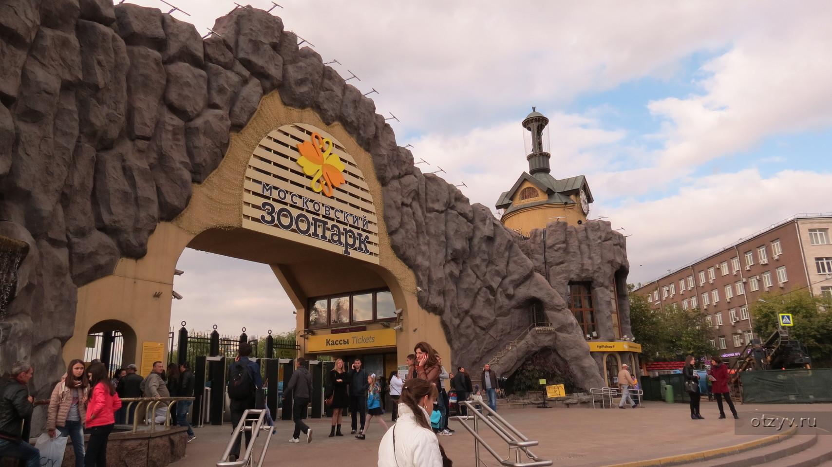 Надписью, московский зоопарк картинки внутри