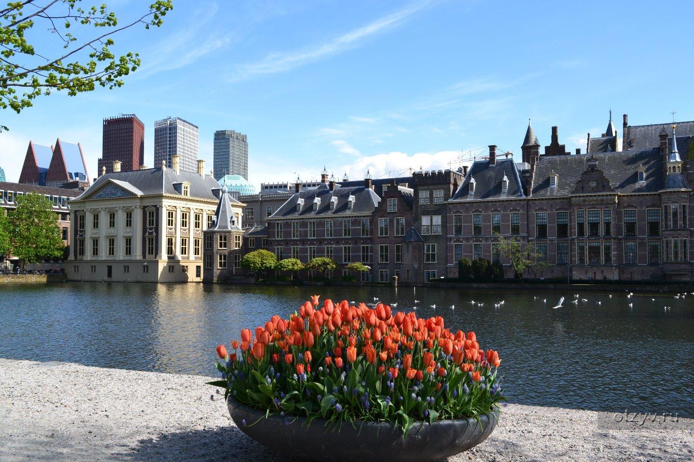 одном достопримечательности нидерландов фото и описание именно вкладыши