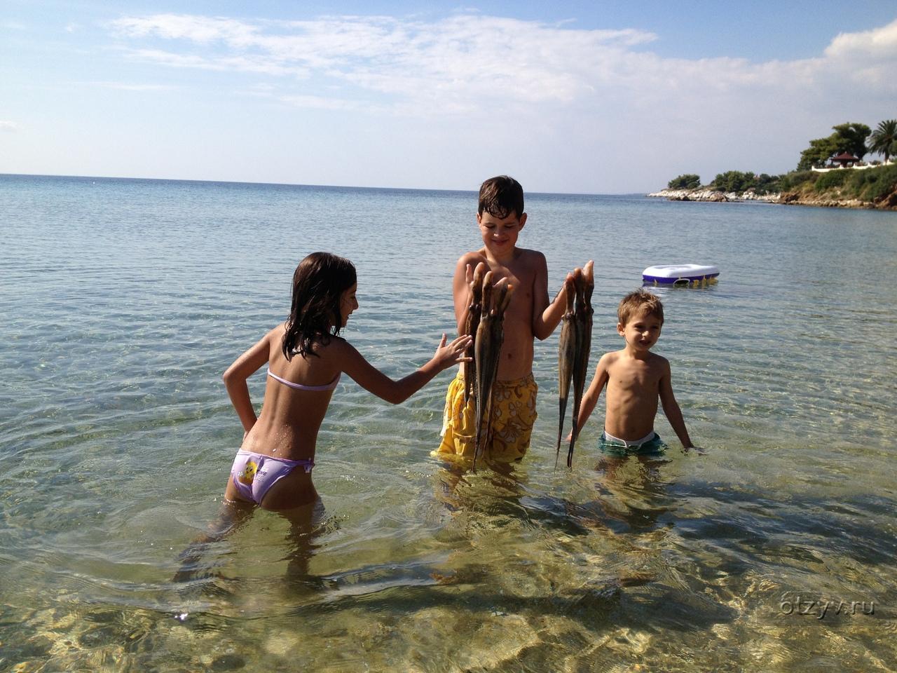 Нудизм Дети  10 Пляж со стороны Кассандры (Кастри) и пляж со стороны Афона (Кавроутрипес)