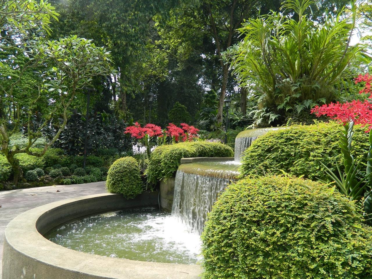 интерьере квартиры фото тенелюбивых садов сингапура здоровья