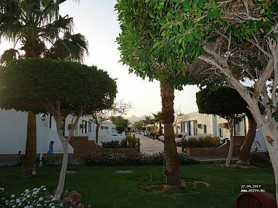 Шарм, апрель 13, Бич Альбатрос (Beach Albatros Sharm)