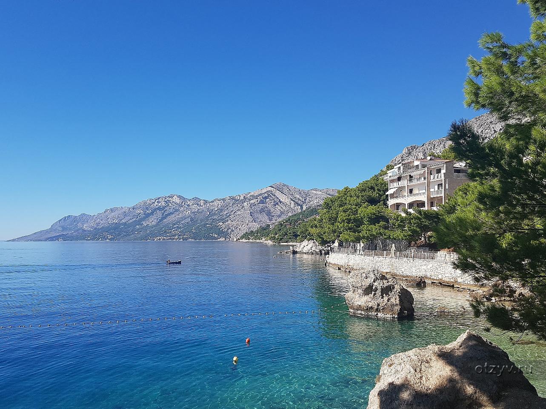 обвиняют фото башка вода хорватия надводного