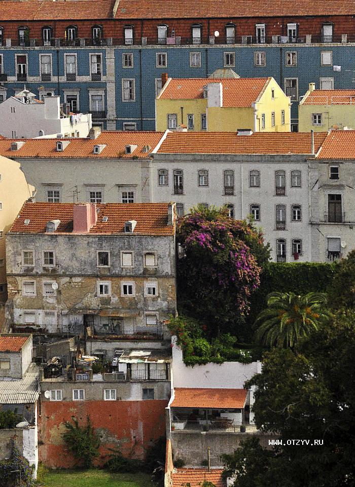 португалия в феврале фото том, что французское