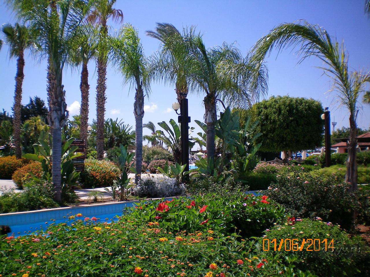 Кипр лимассол фото