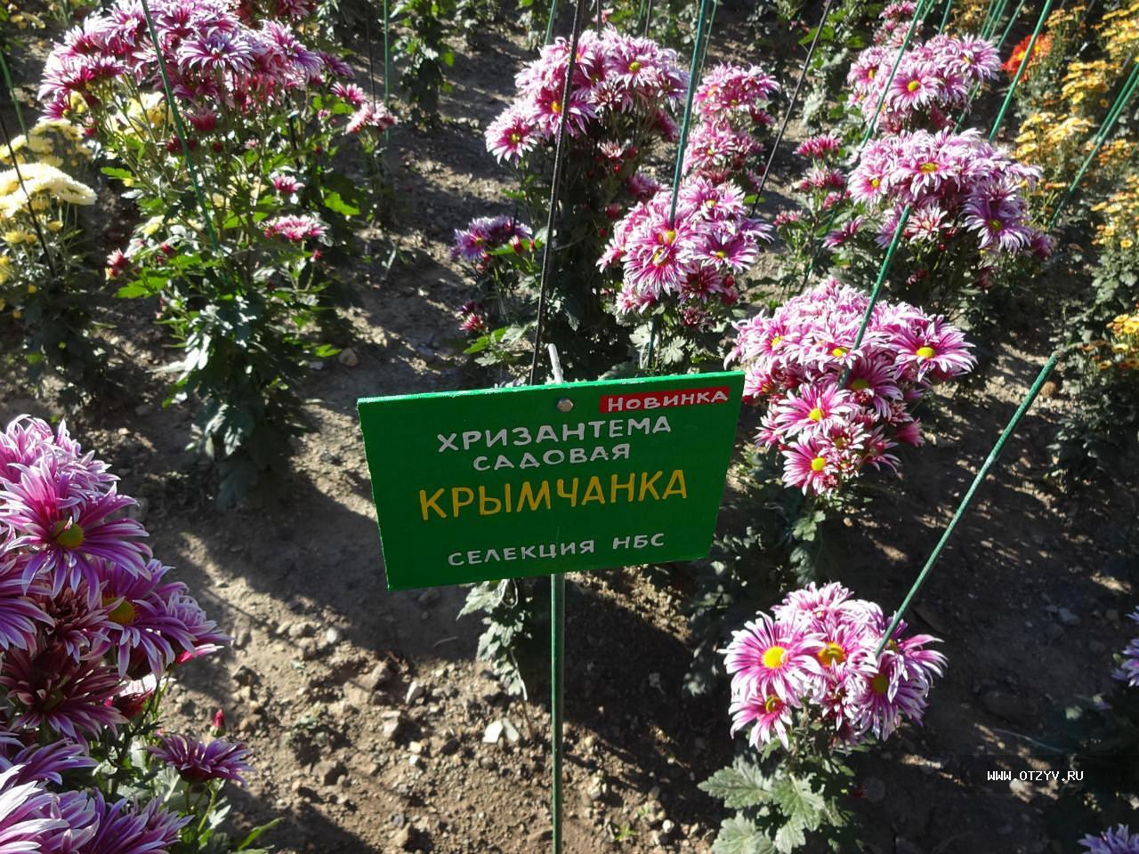 Секс ботаническом саду 8 фотография