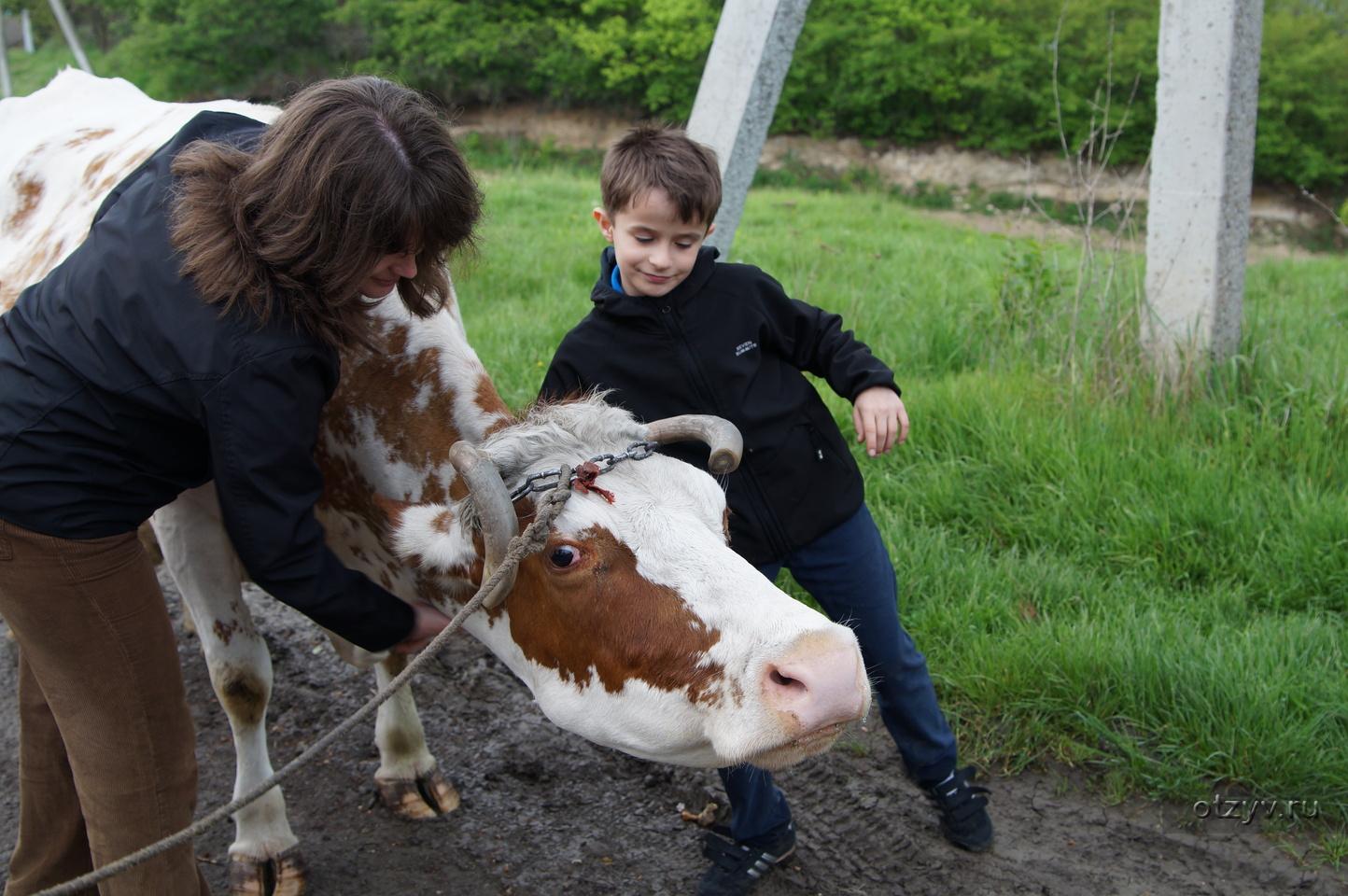 Сельская тётка рассказы 26 фотография