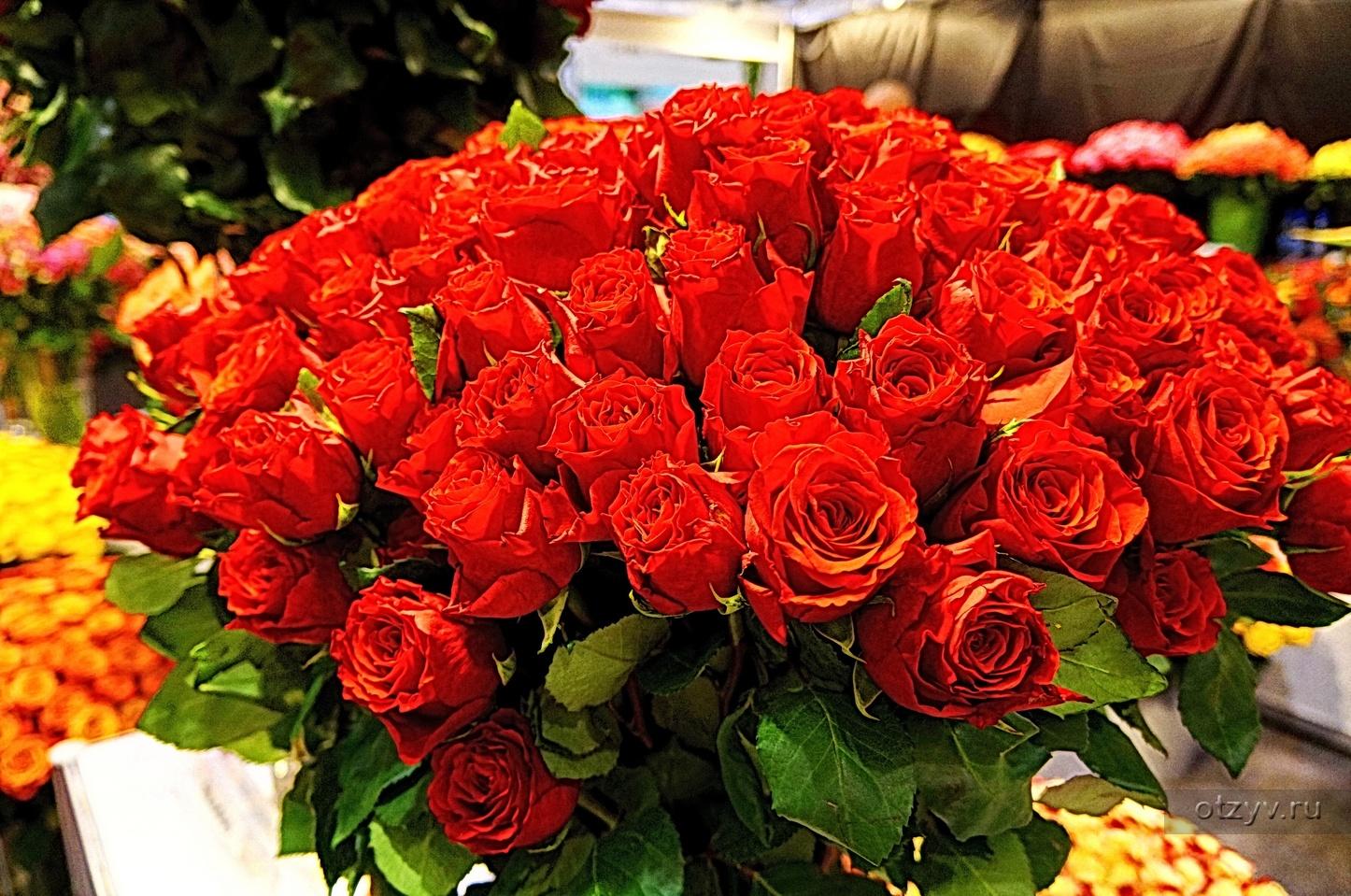 Картинки красивые цветы со смыслом (37 фото) Прикольные 29