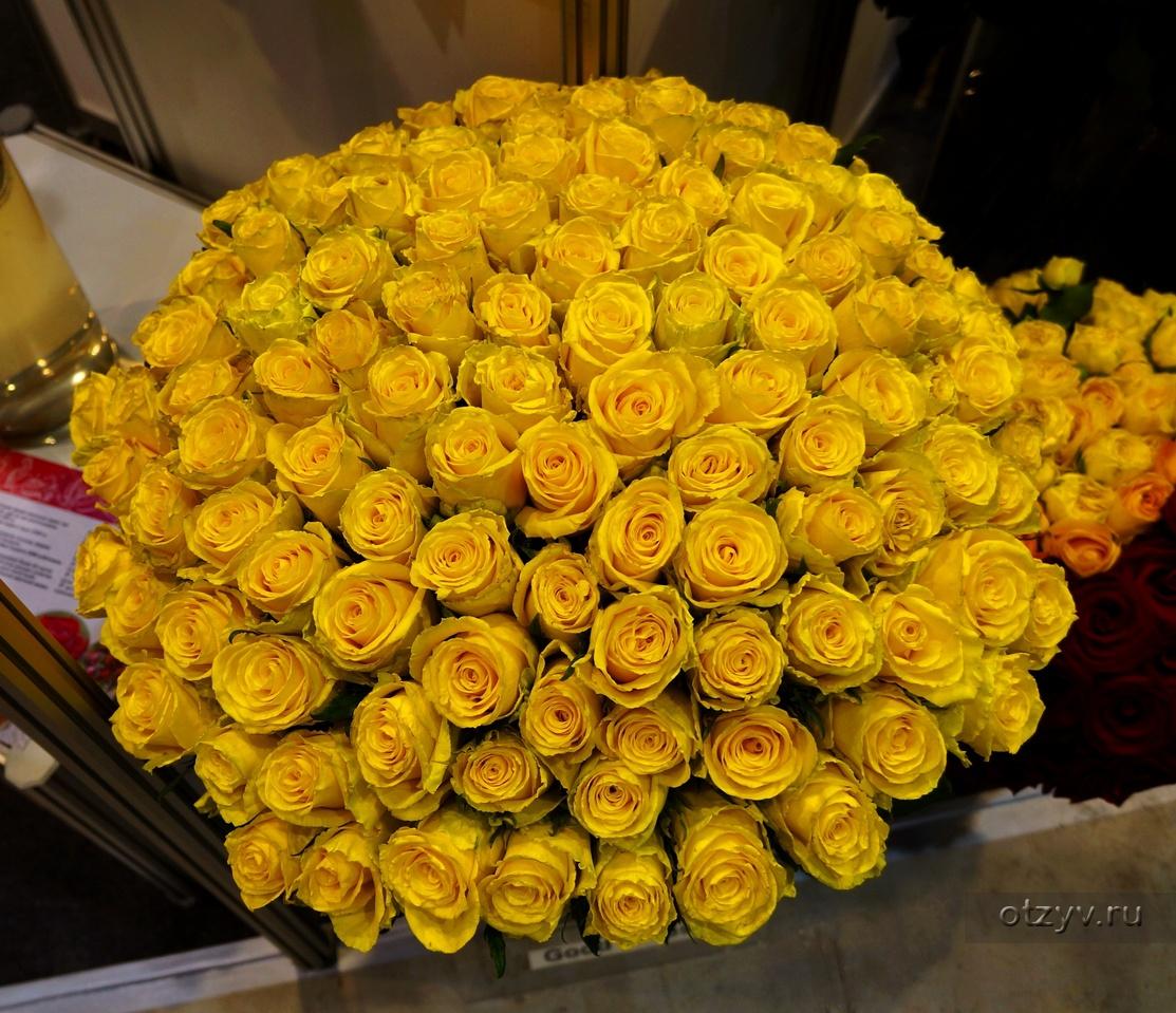 пугливы большой букет желтых роз фото комната