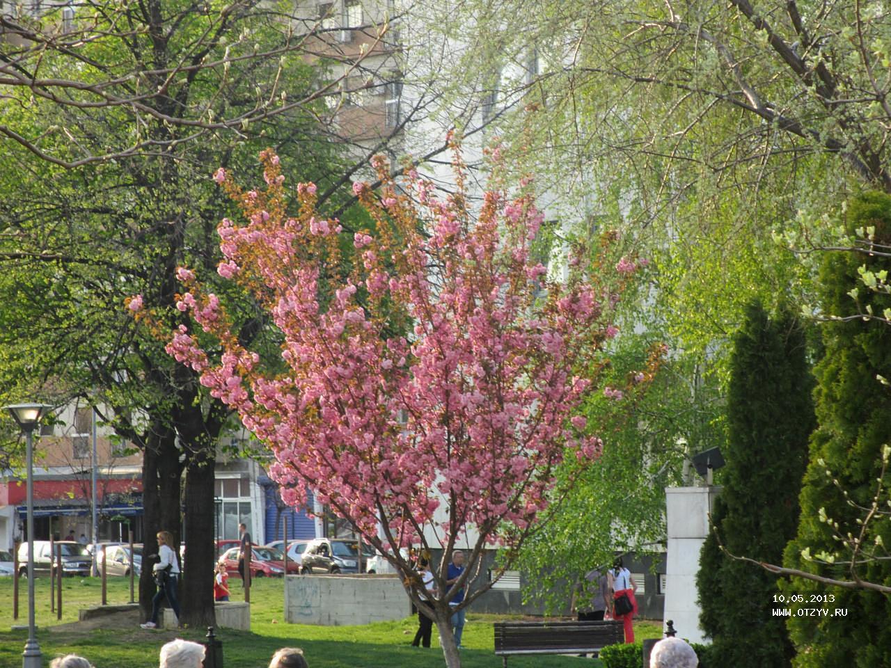 Погода в сербии в апреле-мае