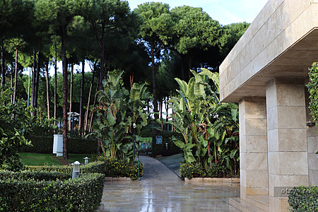 Regnum Karya Golf & SPA (Regnum Carya Golf & Spa Resort)