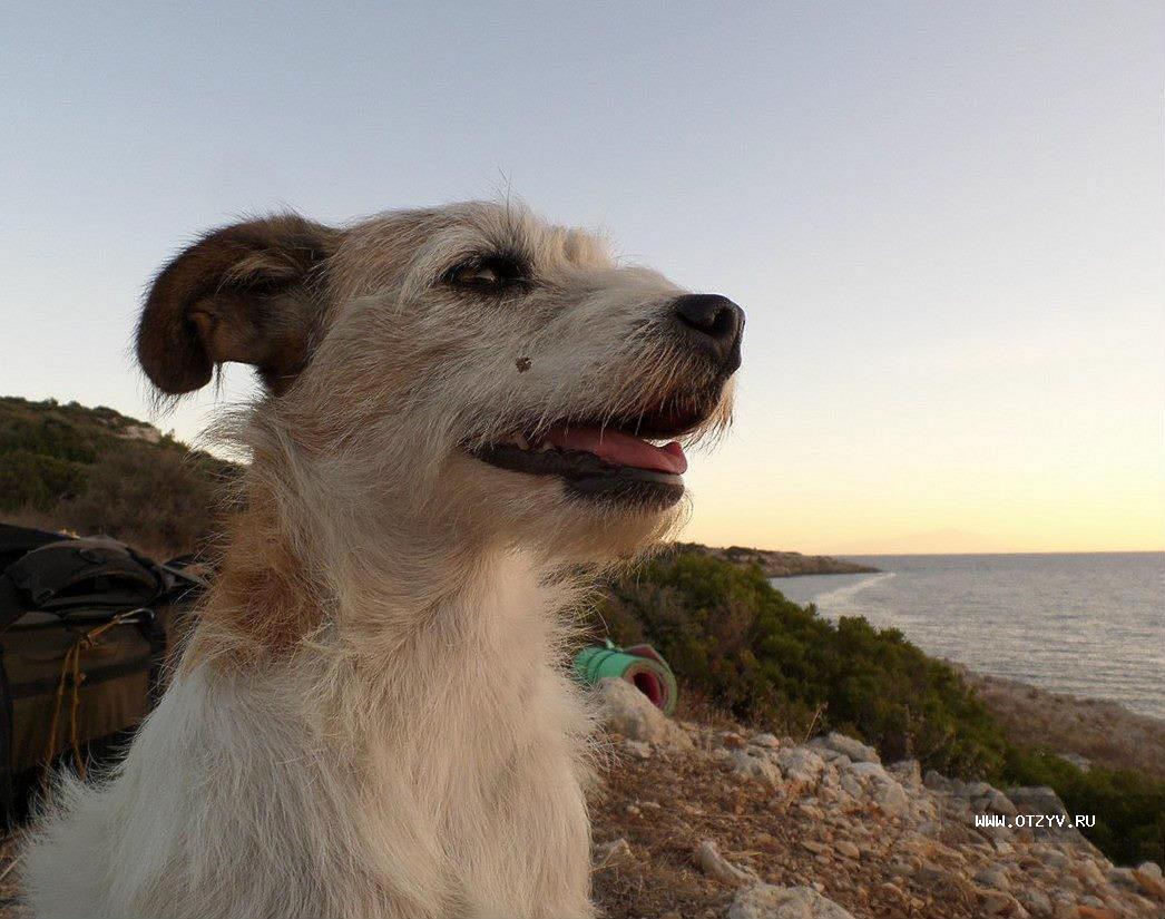 Фото девушка таня на белгородском пляже 24 фотография