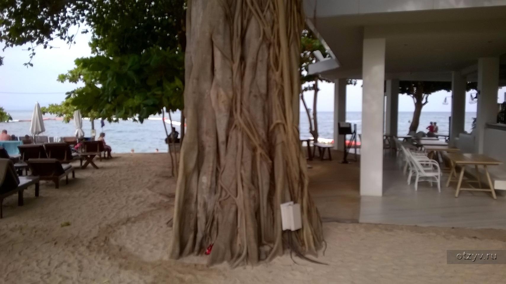 Таиланд в ноябре 2017 года / Long Beach Garden Hotel & Spa ...