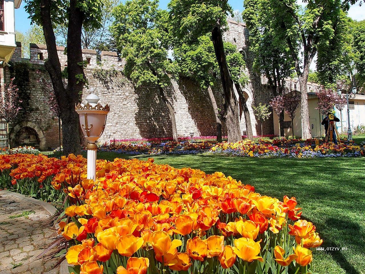 Стамбул парки картинки