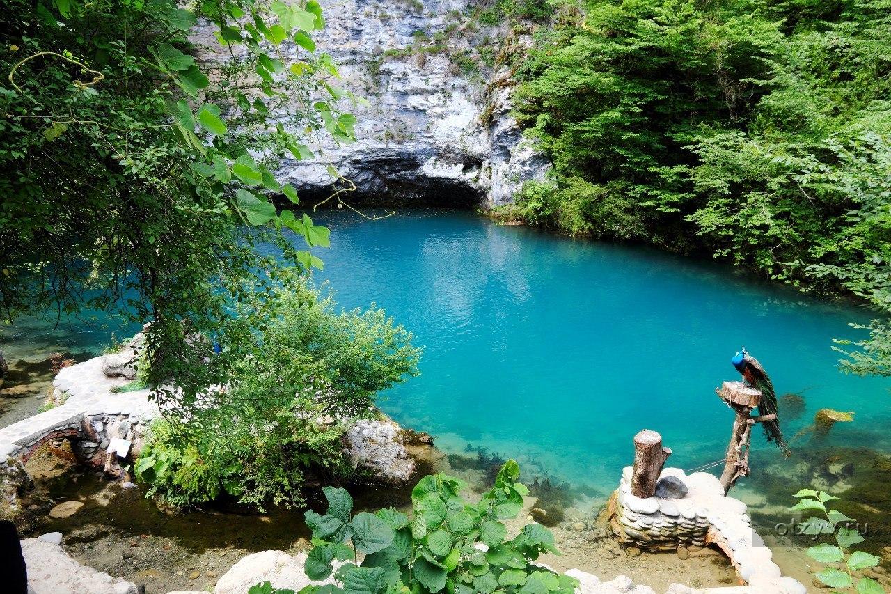 природа сочи фото самые красивые места
