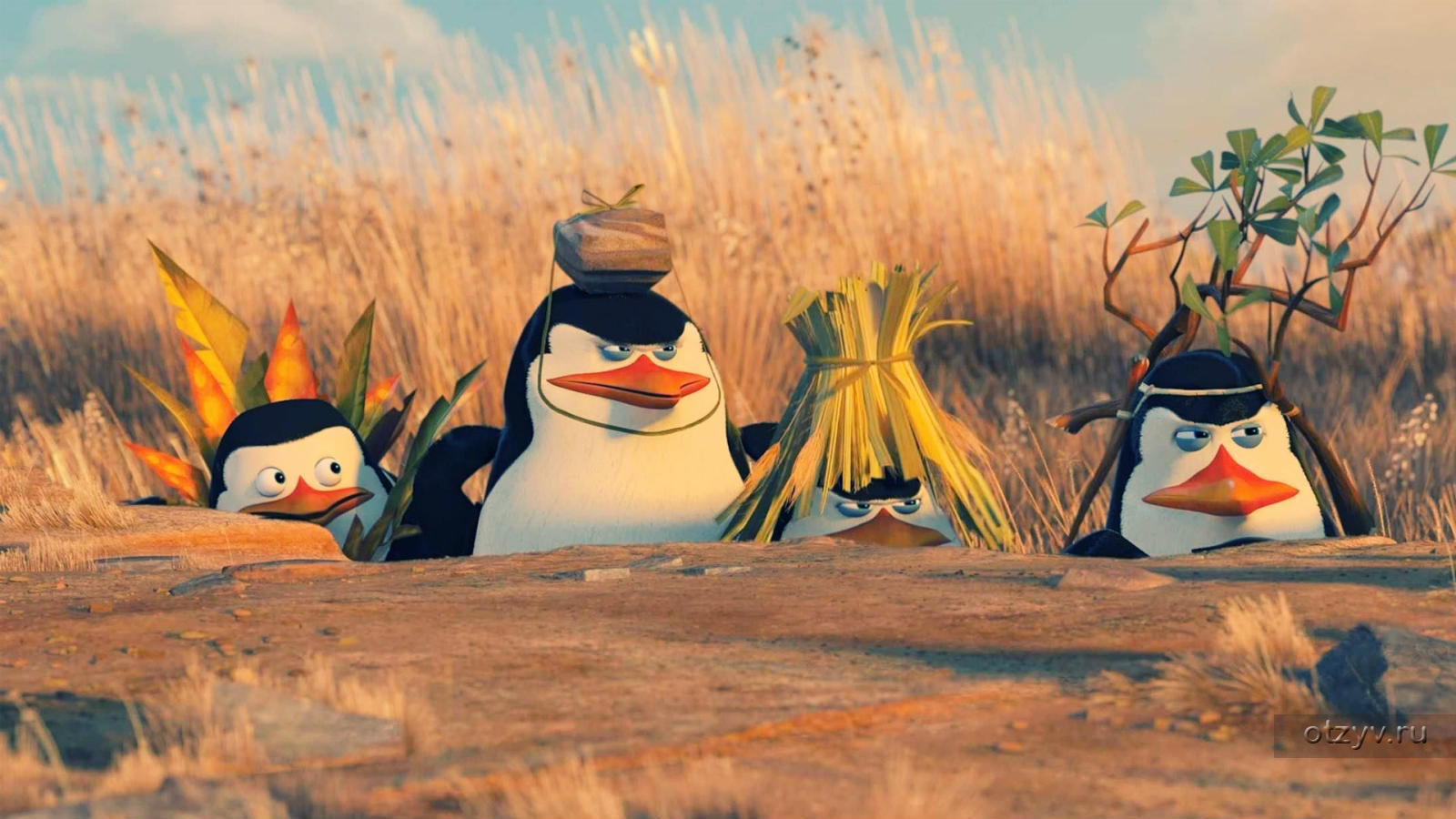 фото пингвины мадагаскара