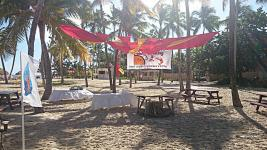 Catalonia Bavaro Resort ����