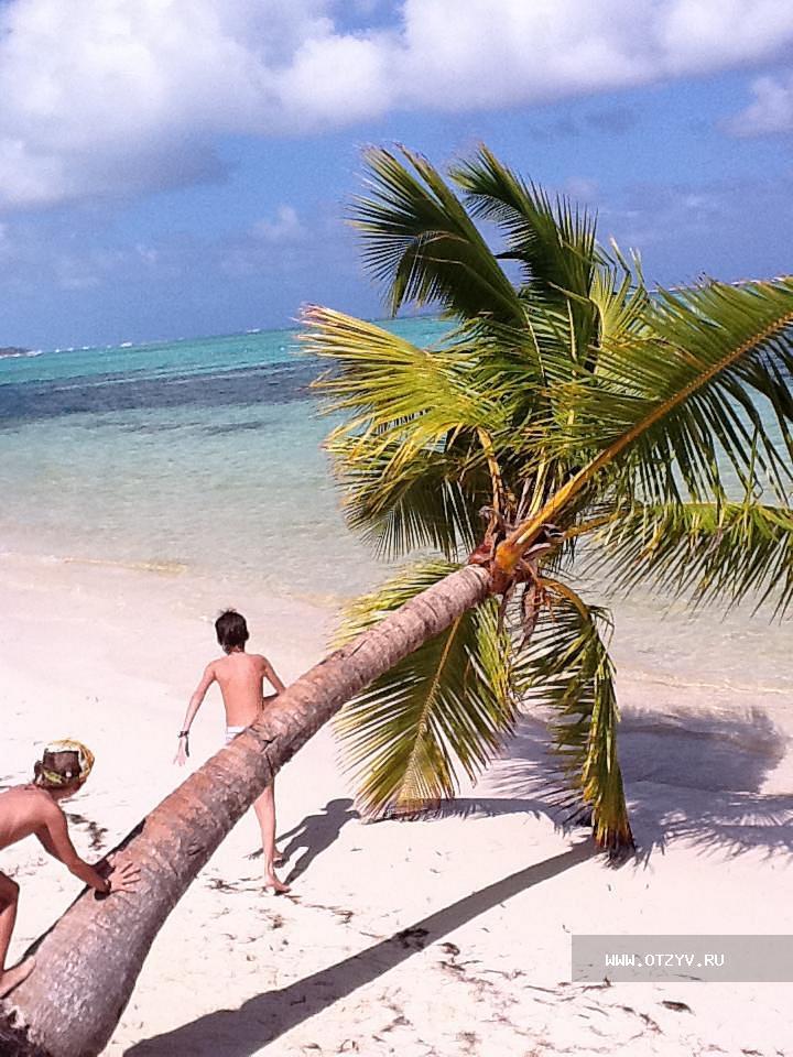 Карибские  майские каникулы!
