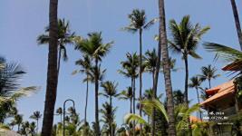 Majestic Elegance Punta Cana ����