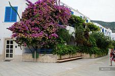 Slovenska Plaza фото