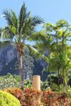 Aonang Villa Resort ����