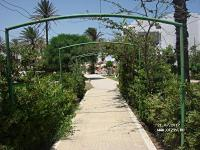 тунис руспина монастир
