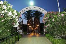 Delphin Diva Premiere ����