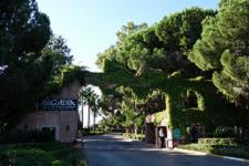 Limak Arcadia Golf & Sport Resort фото